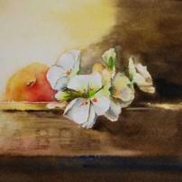 fruitkistje in aquarel